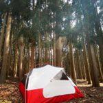 重量が全部で約3キロほどで設営も簡単な優秀テント